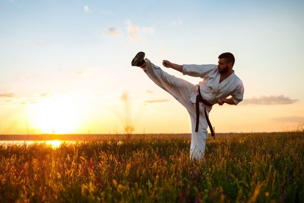Silhouette of young sportive man training karate in field at sunrise.